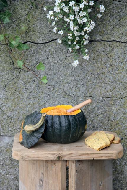 Rezept für einen tollen KÜRBIS-DIP - Foto: Freigegeben