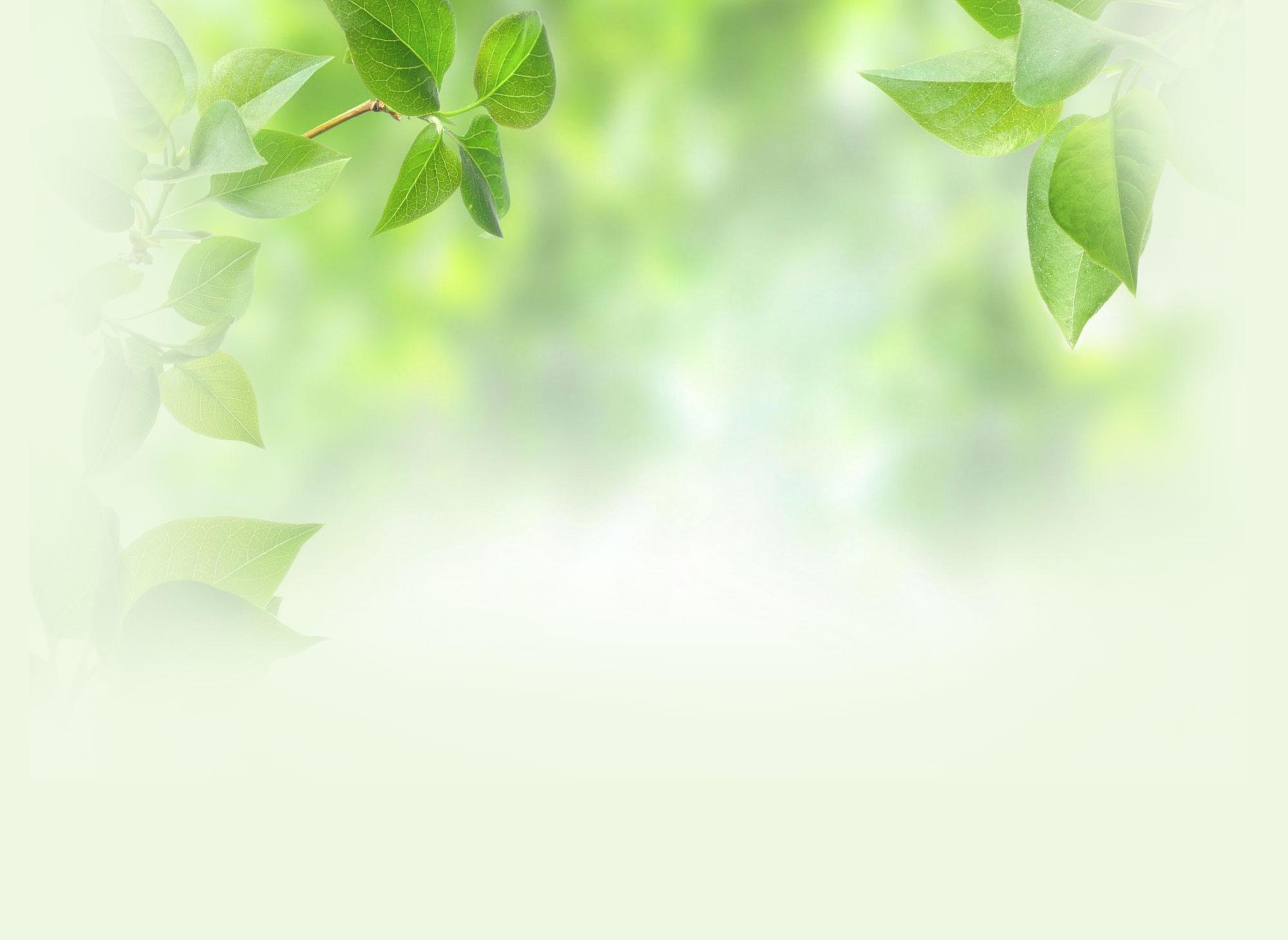 Rezeptewelt-background